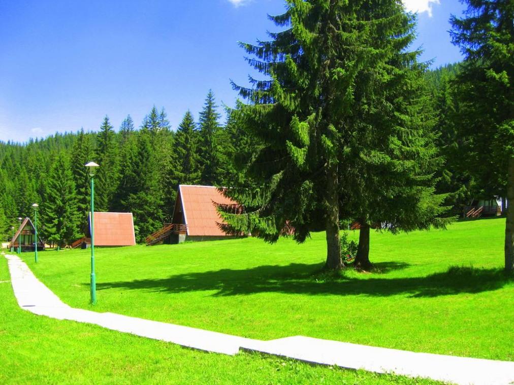Вилно селище Малина